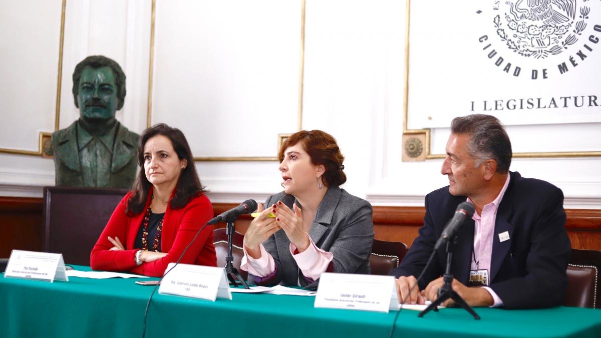 Predomina impunidad inmobiliaria en CDMX: Dip. Gabriela Salido