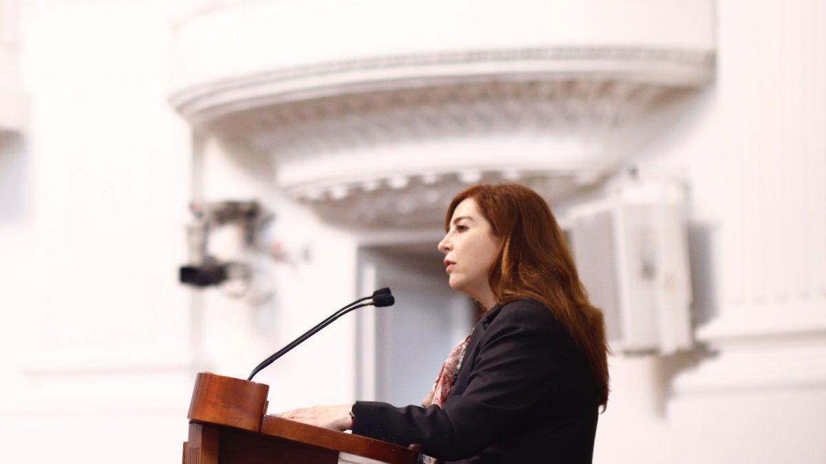 Urgen a autoridades determinar y delimitar el territorio que ocupa el parque reforma social: dip. Gabriela Salido