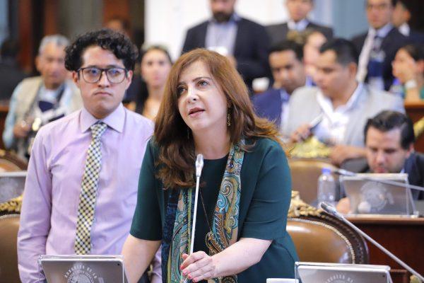 Dip. Gabriela Salido solicita a la SSC informe sobre Programa de Chatarrización 2019