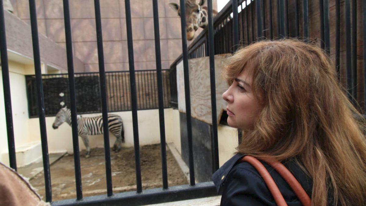 Demandará Dip. Gabriela Salido información sobre el estado que guardan los zoológicos de la CDMX