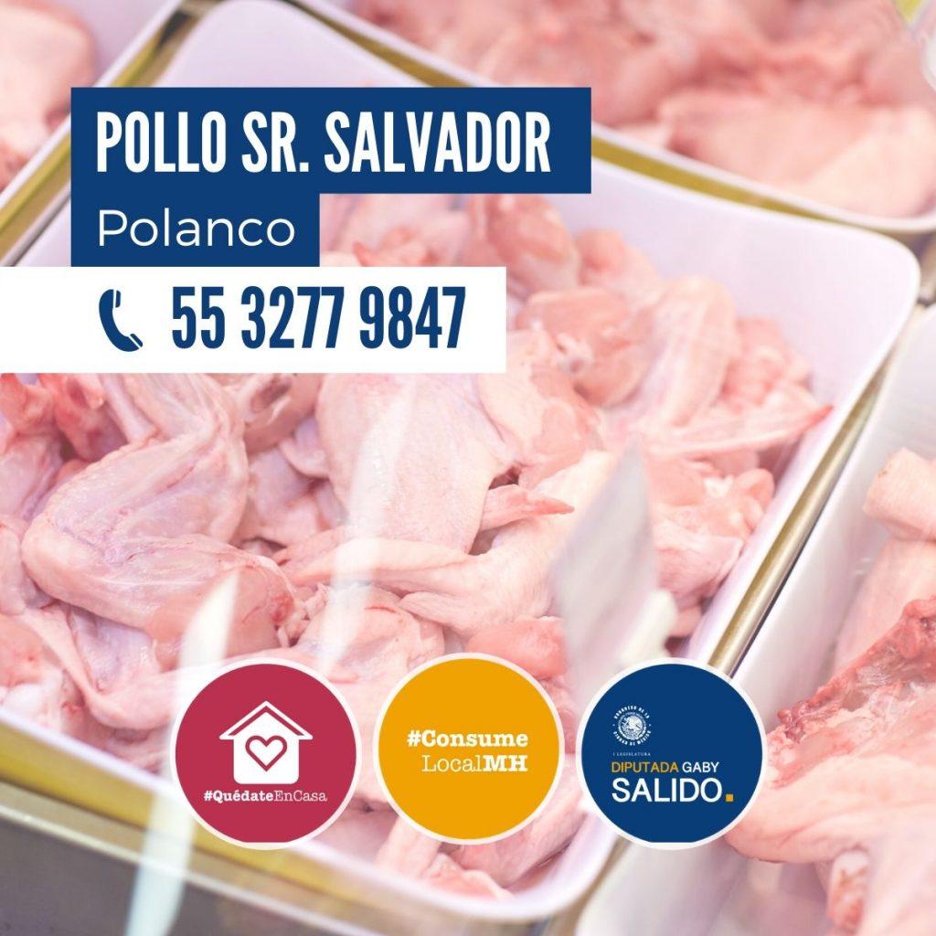 Pollo Sr. Salvador