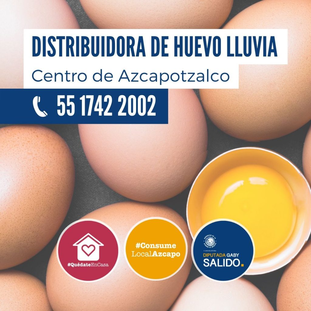 Distribuidora de huevo Lluvia