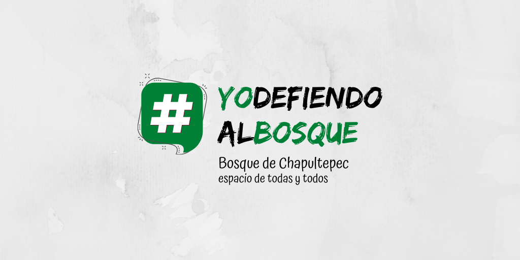 Lanzan campaña #YoDefiendoAlBosque para exigir participación ciudadana y transparencia en proyecto de la 4ª Sección del Bosque de Chapultepec